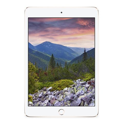 Ipad Air 2 Wifi + 4G 16GB