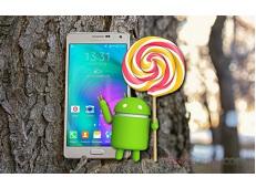 Samsung Galaxy A7 sẵn sàng đón bản cập nhật Android 5.0